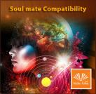 Soul mate Compatibility / Relationship Report