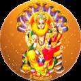 Lakshmi Narasimha Homa
