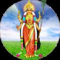 Shri Vidhya Pooja   Attract Everything!