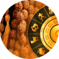 Astrology for Rudraksha