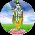 Damodhara Vishnu homam