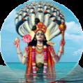 Hrishikesa Vishnu homam