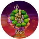Shoolini Durga Homam