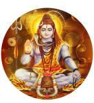 Pradosham Rituals