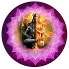 Pancha Shiva Sakthi Maha Homam