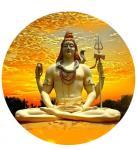 Kedarnath Jyotirlinga Homam