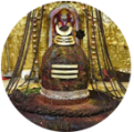 Somnath Jyotirlinga Homam