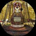 Somnath Jyotirlinga Homam