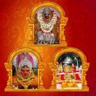 Vasantha Navratri
