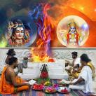 Maha Bharani Special Pitru Dosha Nivarana Homam