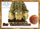 Rudraksha for Celebrities