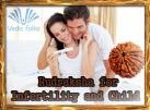 Rudraksha for Infertility and Child Birth